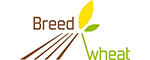 Logo Breedwheat