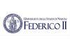 logo Iniversity Naples Federico II
