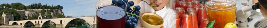 Fruit&Vegetable Processing 2020