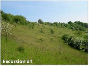 Grassland - excursion 1