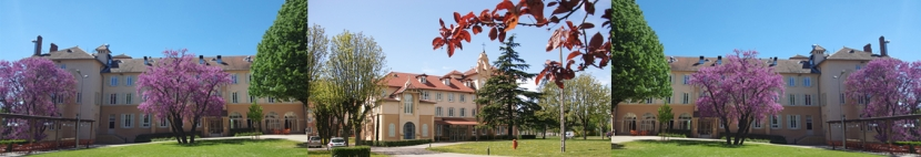 Domaine Lyon Saint-Joseph, Sainte-Foy-lès-Lyon