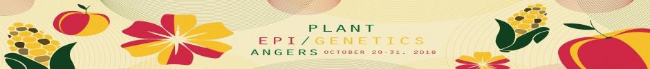 Welcome to Plantepigenetics Symposium